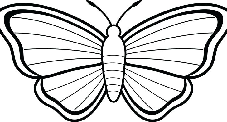 728x393 Cartoon Butterfly Pictures To Color Cartoon Butterfly Images