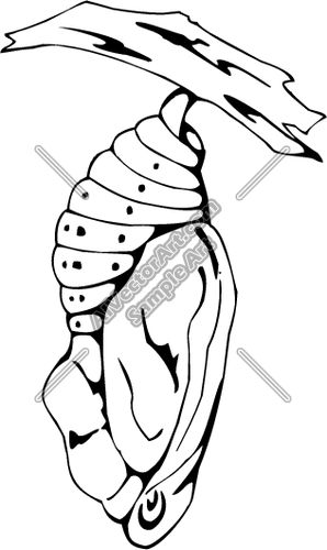 298x500 Cocoon Clipart And Vectorart Animals