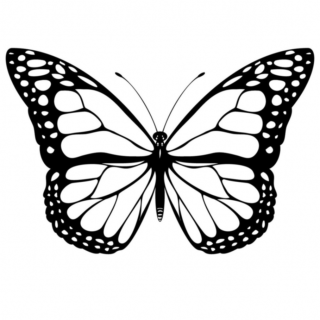 1024x1024 Cool Butterfly Drawings How I Draw A Swirly Symmetrical Butterfly
