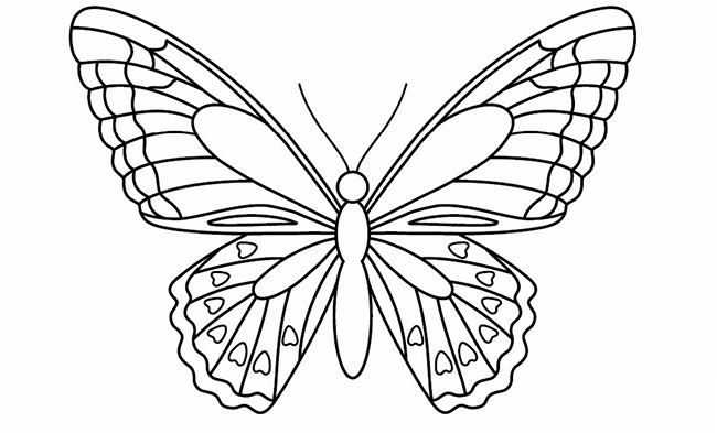 650x393 Butterfly Templates Printable Crafts Amp Colouring Pages