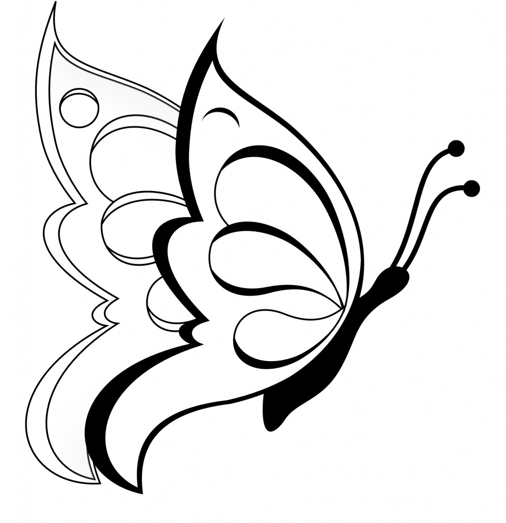 990x1024 Simple Pencil Drawing Images Of Butterfly Design Drawings