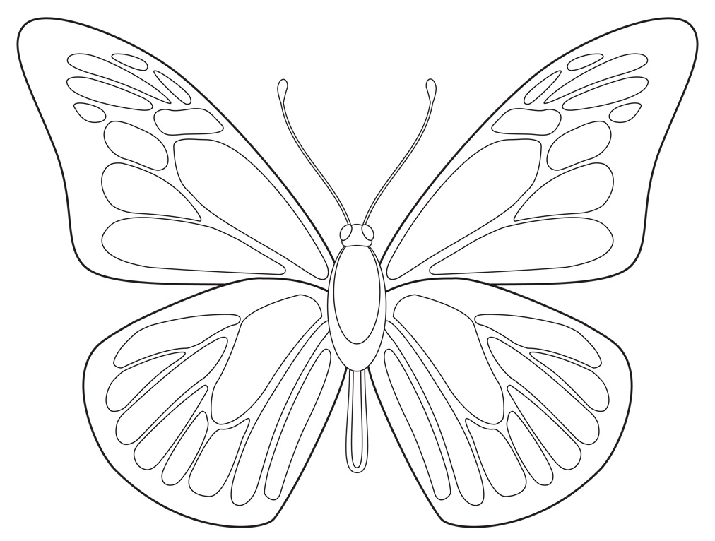 1012x766 Free Butterfly Printable
