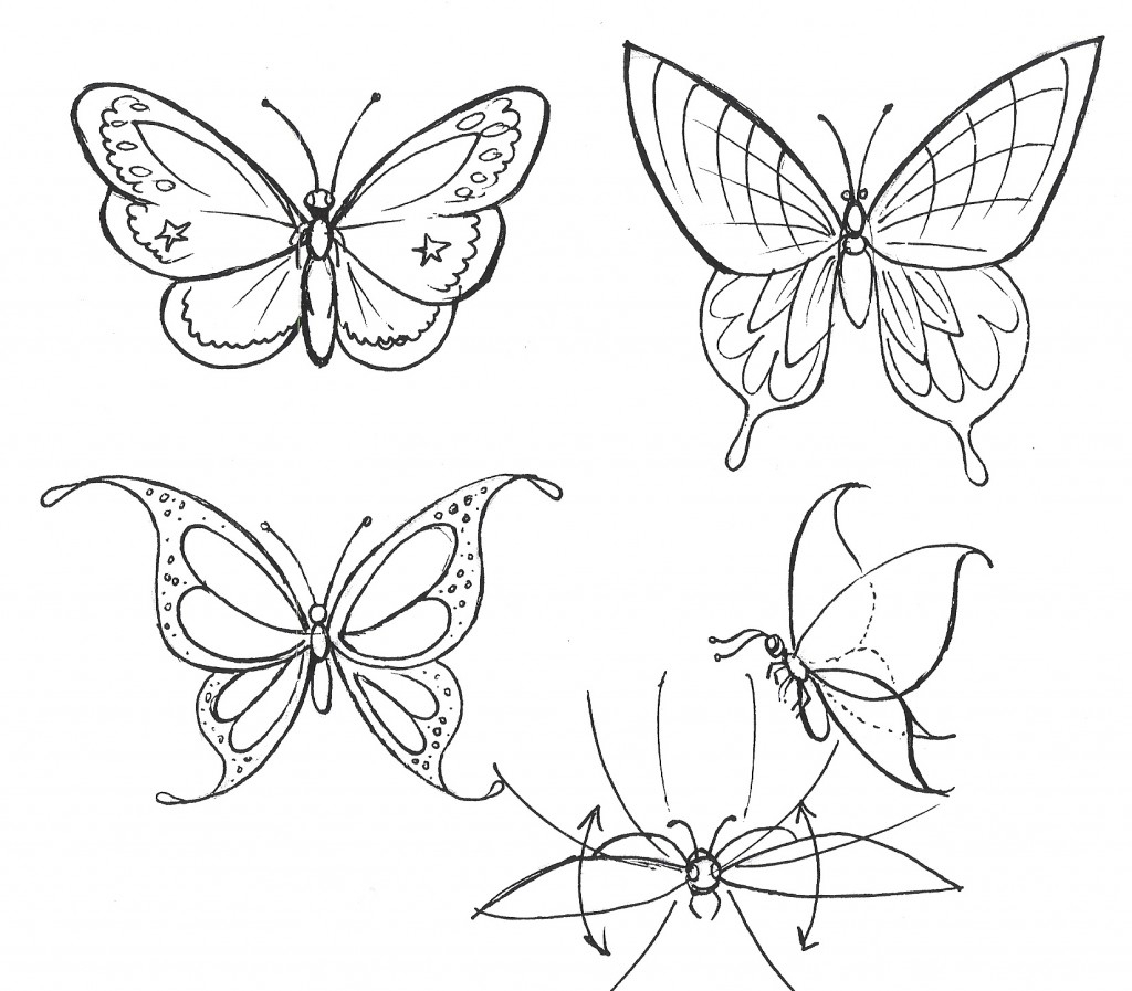 1024x897 A Drawing Of A Butterfly How To Draw A Flower Step By Step About