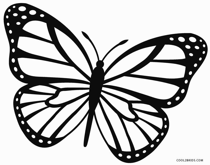 800x628 Happy Monarch Butterfly Coloring Page Book