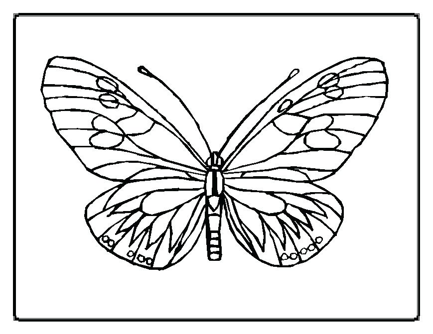 869x671 Cute Butterfly Coloring Pages Butterfly Coloring Pages Butterfly