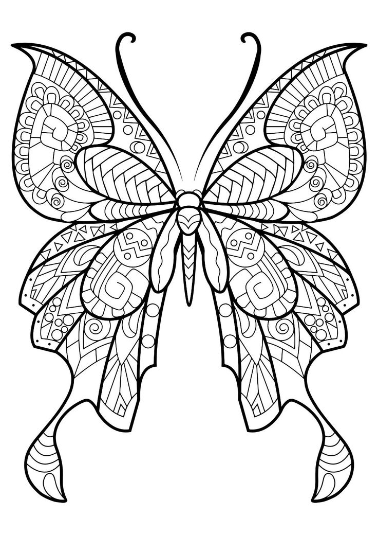 736x1040 best 25 butterfly drawings with color ideas on pinterest - Butterflies To Color 2