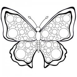 Butterfly Drawing For Kids
