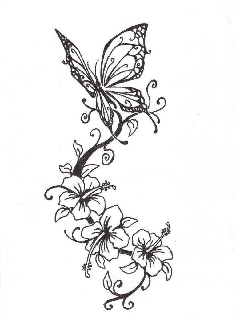 767x1042 Drawing Of Flowersnd Butterflies How To Draw Butterfly On