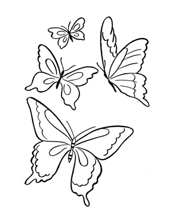 600x734 Four Butterflies Flying On The Park Coloring Page