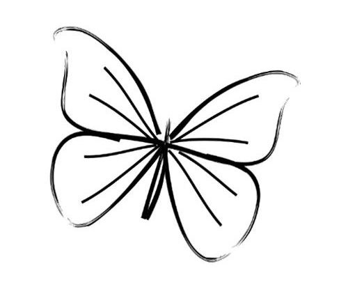 500x425 Easy Draw Butterfly 25 Trending Simple Butterfly Drawing Ideas