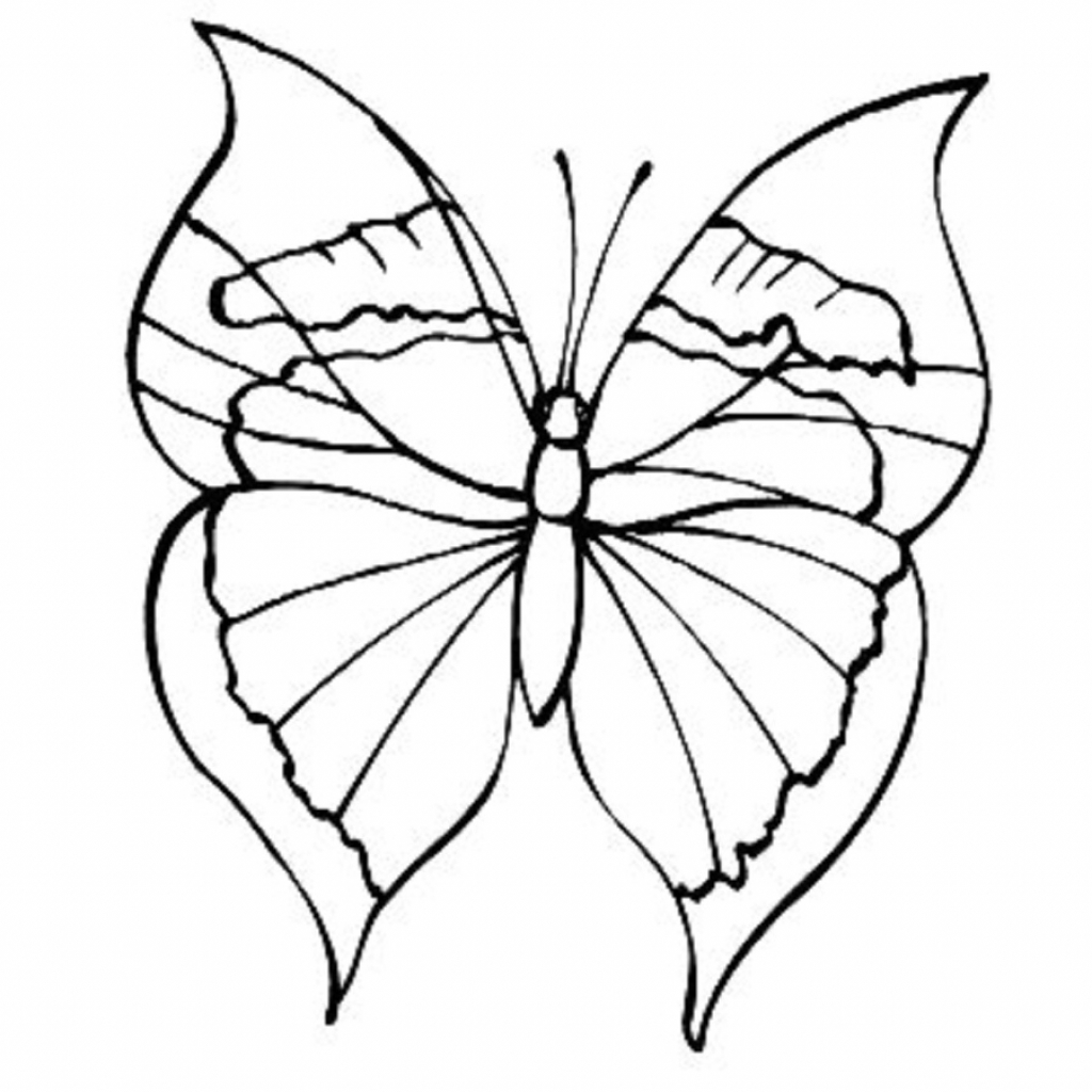 Simple Butterfly Drawing: Butterfly Drawing Simple At GetDrawings