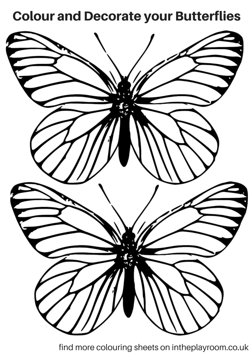 794x1123 free printable butterfly colouring pages butterfly printable