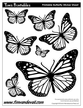 graphic about Printable Butterfly Template named Butterfly Drawing Template at  Totally free for