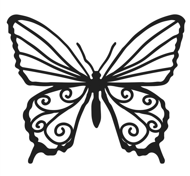 Erfly Template | Butterfly Drawing Template At Getdrawings Com Free For Personal