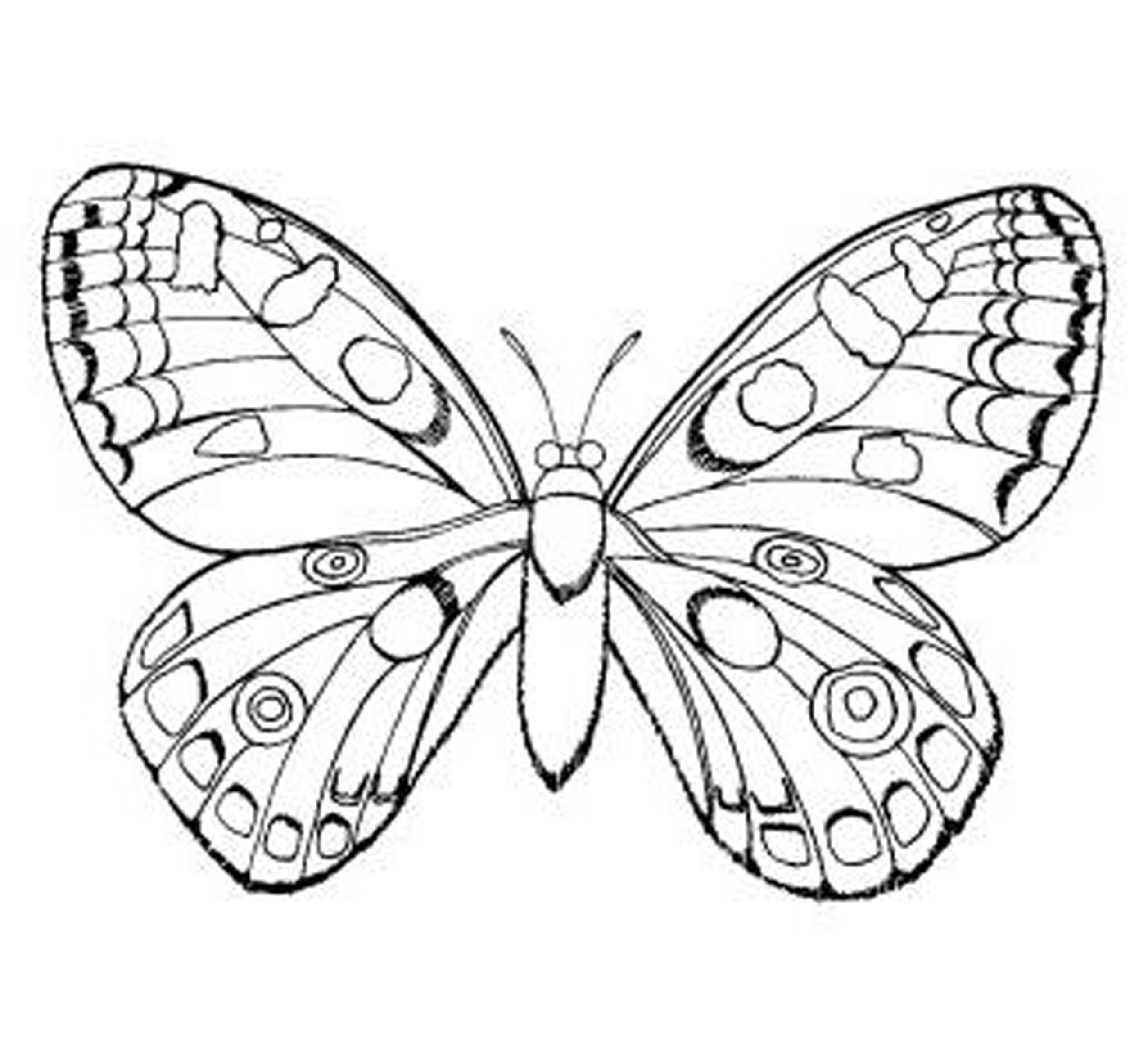 2550x2347 Coloring Pages For Girls Butterfly Tiny Draw Print Printable