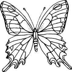 236x236 Free Butterfly Coloring Pages Kid Crafts
