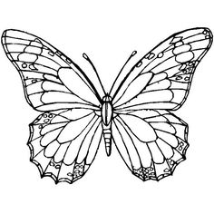 236x236 Printable Monarch Butterfly Coloring Page