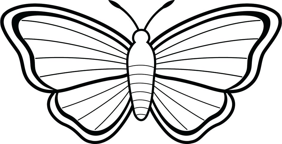 945x484 Free Butterfly Coloring Pages