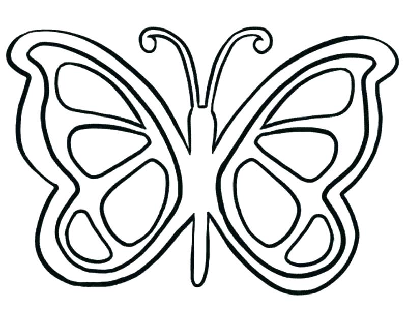 800x635 Butterflies Coloring Page Coloring Page Of Butterfly Butterfly