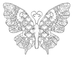 240x187 Butterfly Coloring Pages Download Free Butterflies To Color