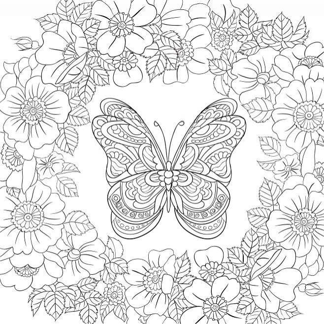 Butterfly In Garden Drawing At Getdrawings Com Free For