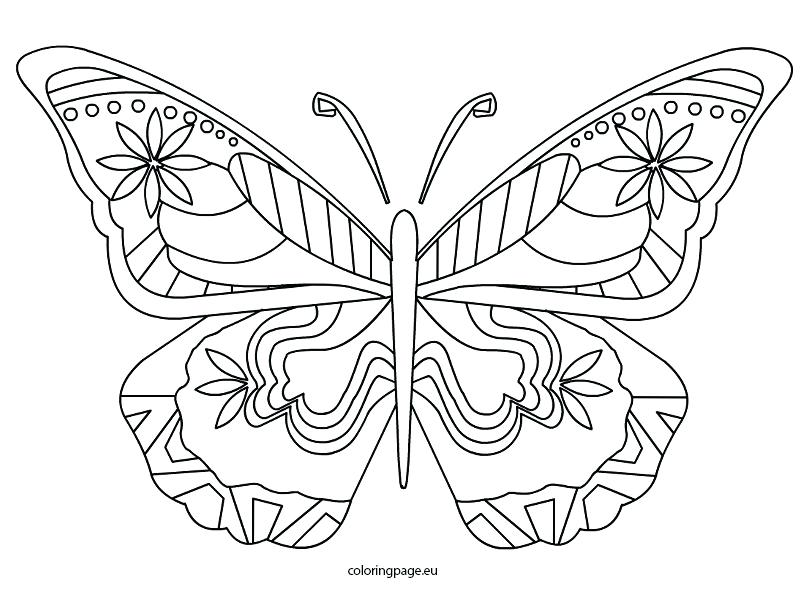 Attractive 808x595 Butterfly Coloring Page Gallery Of Butterfly Coloring Pages Free