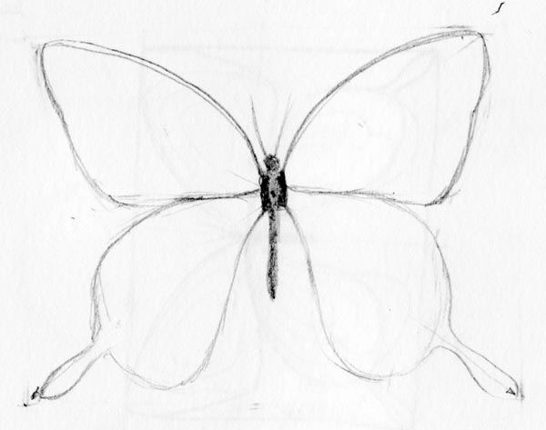 600x473 easy to draw butterflies butterfly drawing drawing factory