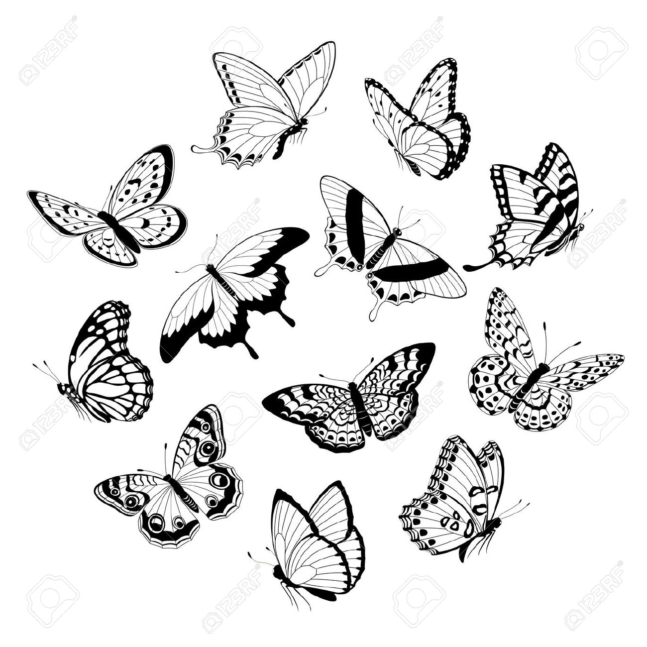 1300x1300 Drawn Butterfly Flying Butterfly