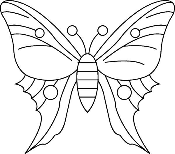 600x529 Simple Butterfly Drawing Coloring Page