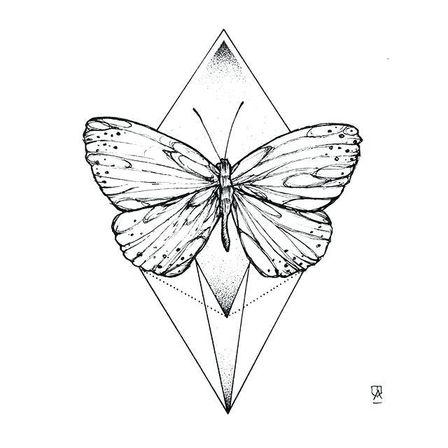 640x640 Butterflies To Draw Drawing A Butterfly Step 1 Butterflies