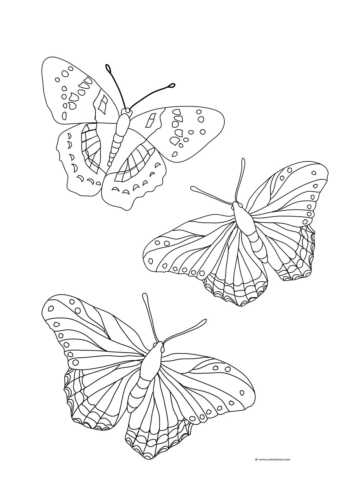 1240x1754 Butterfly Coloring Pages