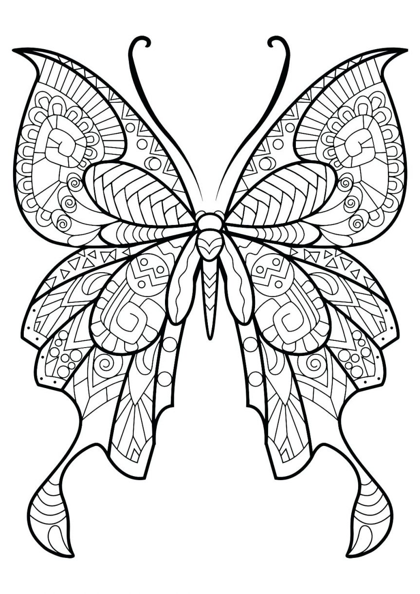 Butterfly Simple Drawing at GetDrawings | Free download