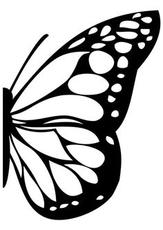 236x333 Image Result For Monarch Butterfly Wings Mural Wing Murals