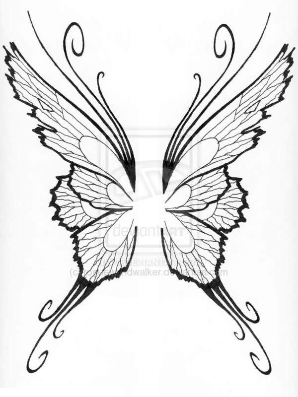 Butterfly Wings Drawing at GetDrawings.com | Free for personal use ...