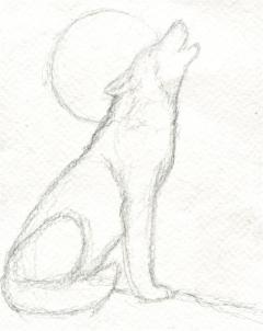 240x302 Realistic Werewolf Drawings In Pencil