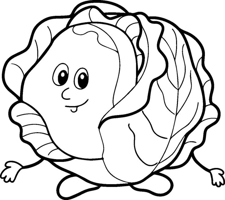 2079x1483 Cabbage Vegetable Coloring Page For Kids Printable Educational 1 736x655 43 Best Patch Images On Pinterest