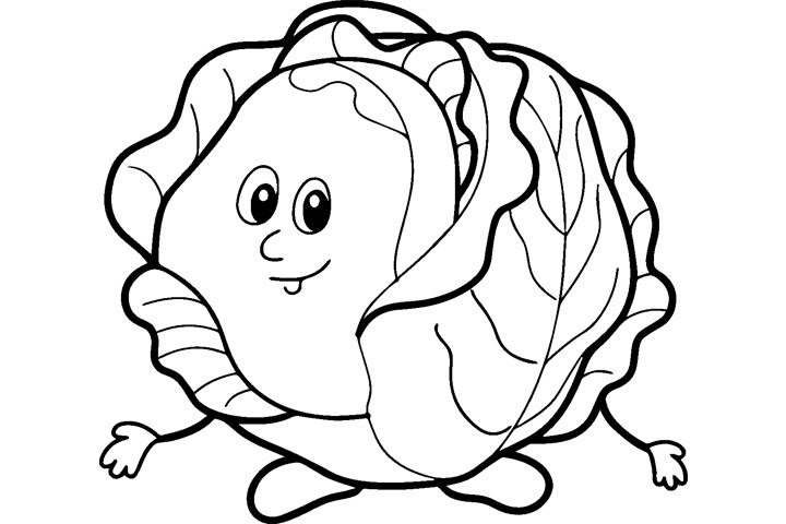 720x480 Cabbage Coloring Pages 5 Nice Coloring Pages For Kids