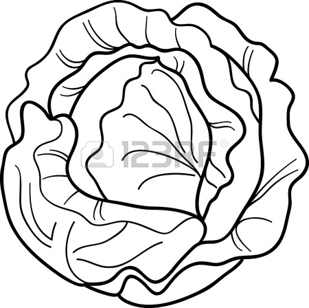 450x448 Black And White Cartoon Illustration Of Cabbage Or Lettuce