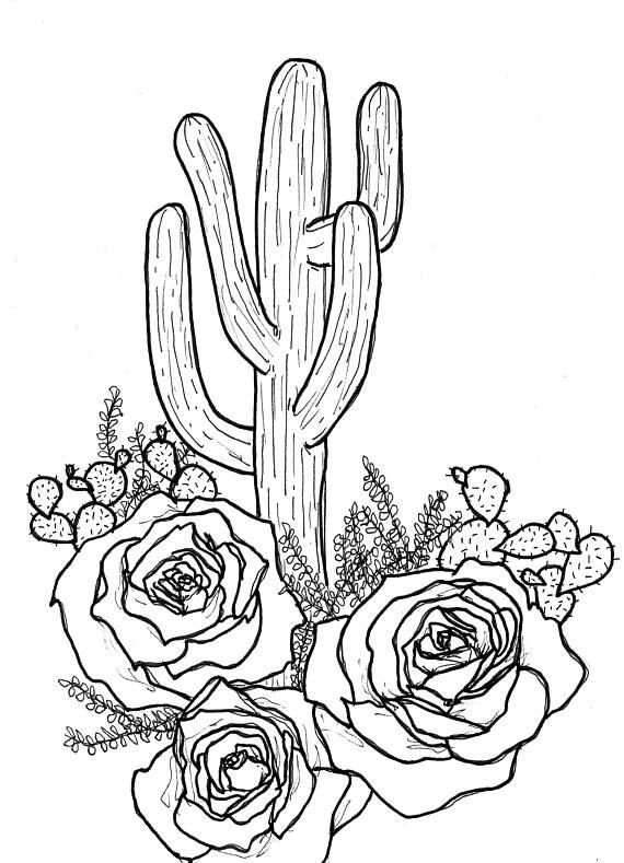 570x789 Cactus Rose Cactus Drawing Saguaro Drawing Cactus