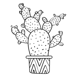 256x256 Cactus Outline Drawings Set
