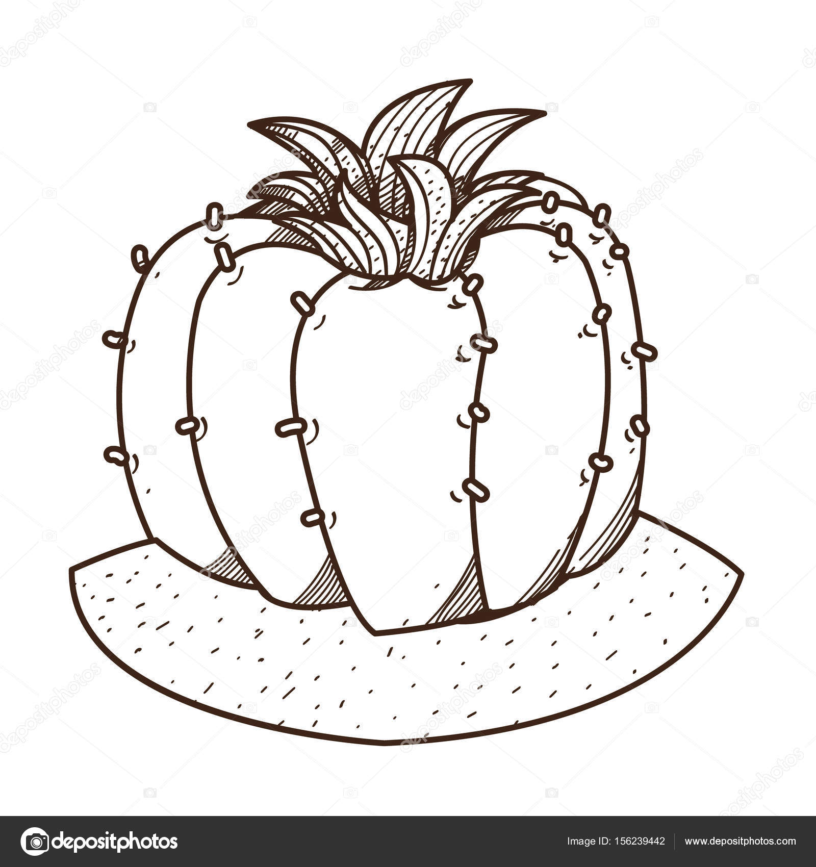 1600x1700 Blooming Cactus Outline Drawing Stock Vector Filkusto