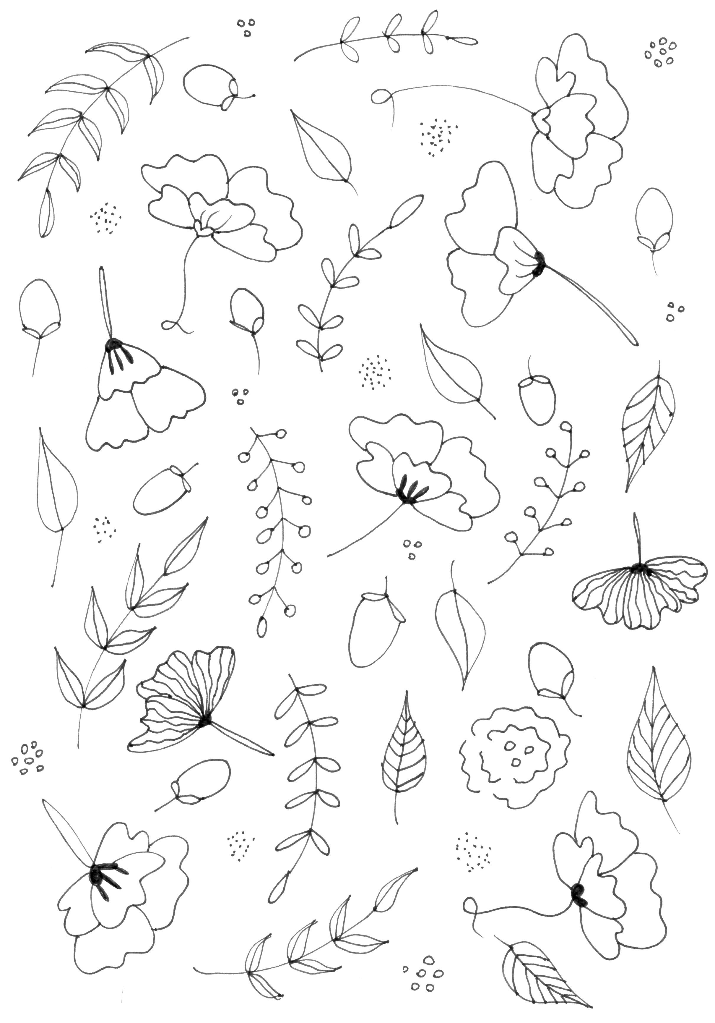 2420x3460 Botanical Line Drawing Practice And Pattern Skillshare Projects