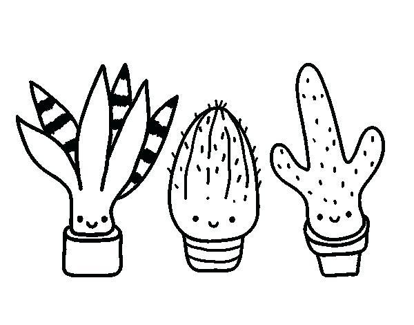 600x470 Cactus Coloring Page Murs
