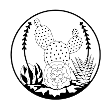 225x224 Image Result For Cactus Sketch Tumblr 333 Cacti