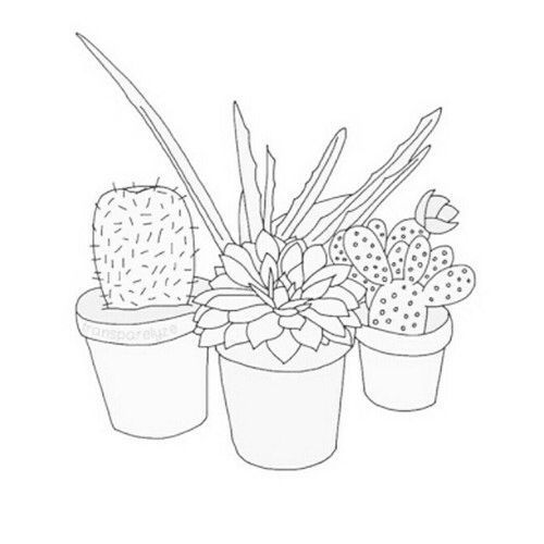 500x500 best 25 cactus outline ideas on pinterest simple doodles