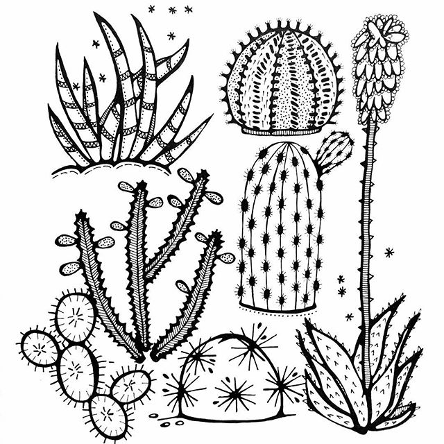 640x640 Finished! Drawing 2131, Subject Draw A Cactus. Tijd Voor Een