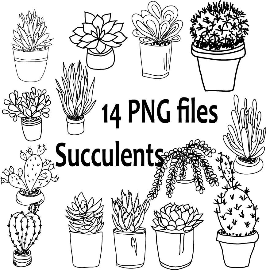 867x878 Hand Drawn Cacti Potted Plants