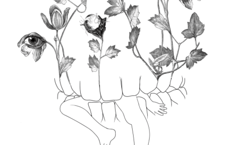 Cactus Tumblr Drawing at GetDrawings com | Free for personal