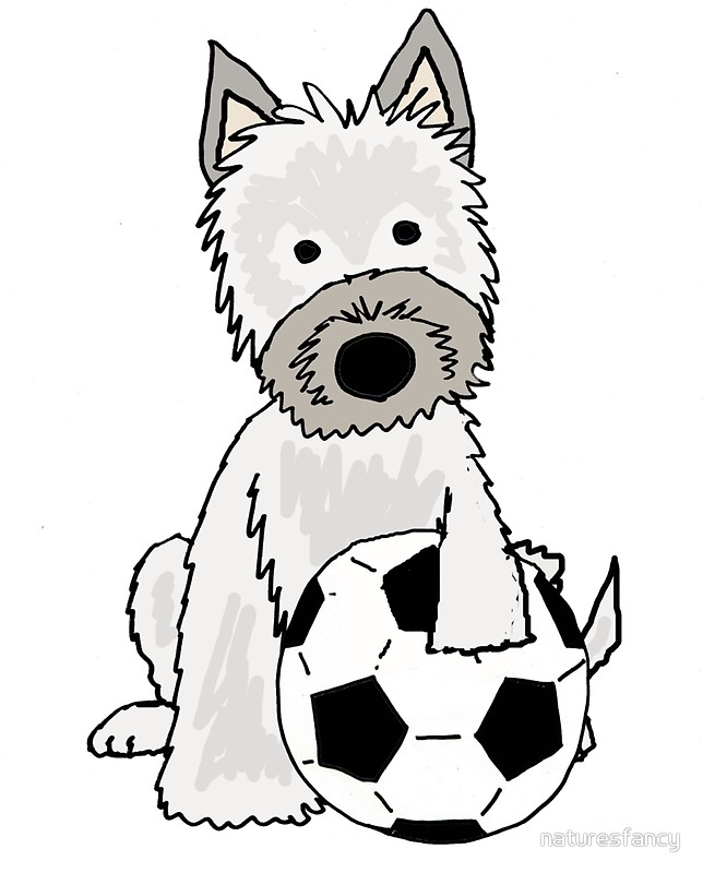 644x800 Cool Funky Cairn Terrier Dog Playing Football Stickers By