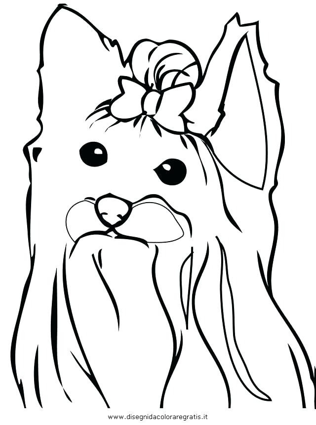 640x860 Yorkie Coloring Page Click To See Printable Version Of Cairn